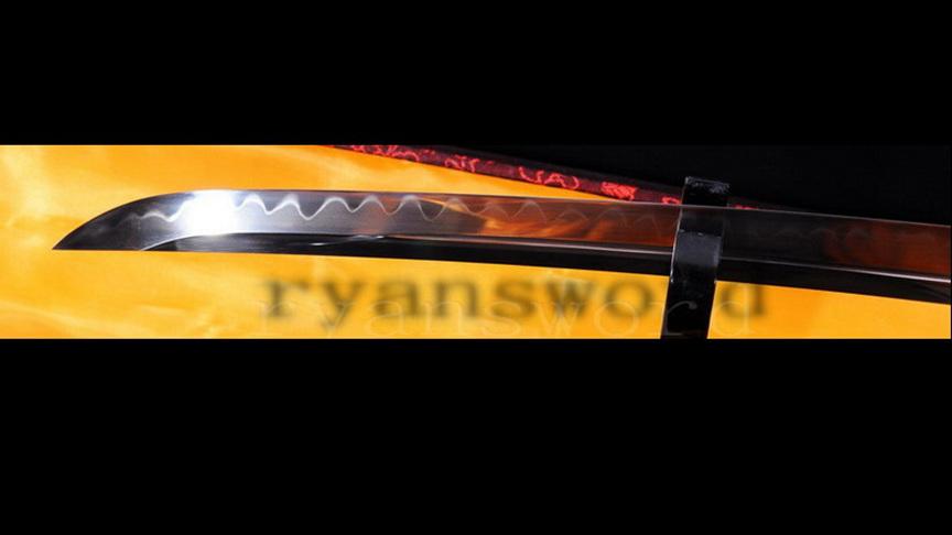 ryan789-20170101/r789/r78905.jpg