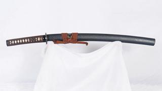 Wakizashi Clay Tempered Feather Pattern Blade Iron Tsuba Battle Ready--Ryan1254