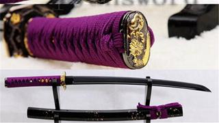 Black Blade Wakizashi Japanese Samurai Sword 1060 Carbon Steel Full Tang Light Cutting--Ryan830